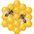 ストックベクタ: Vector bees on honeycells