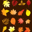 Vector fall leaves set — Stock Vector