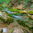 A small mountain stream - Stock Photo