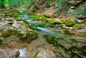 A small mountain stream — ストック写真