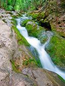 Górskie rzeki rapids — Zdjęcie stockowe