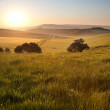 Summer sunrise over English countryside rural landscape — Stock Photo #10840236