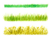 Three Grass Border Pieces Watercolor Hand Drawn and Painted — Stock Photo