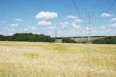 Electrical high voltage lines on the wheat field — Stock Photo