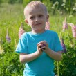 Little boy in the field with bright flowers — Stock Photo