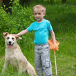 Stock Photo: Boy playing with dog in the forest