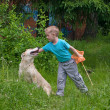 Boy playing with dog in the forest — Stock Photo #11117694