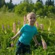 Little boy in the field with bright flowers — Stock Photo #11117804