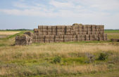 Stacked straw bales — Stock Photo