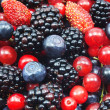 Different fresh berries — Stock Photo #12404025