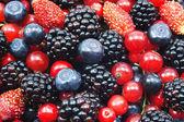 различные свежие ягоды — Стоковое фото