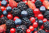 Different fresh berries — Stockfoto