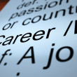 Stok fotoğraf: Career Definition Showing Profession And Employment