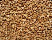 Buckwheat close up. Background — Stock Photo