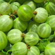 Green gooseberries close up - berry background — Stock Photo