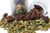 Green and black cardamom — Stock Photo