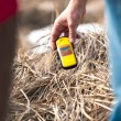 Stock Photo: Geiger counter in polluted environment