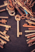 A large group of rusty keys — Stock Photo
