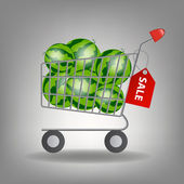 Vector illustration of full supermarket shopping cart with wate — Stock Photo