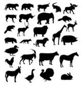 Hayvanlar siluet vektör kümesi — Stok fotoğraf