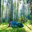 Dawn in the tourist camping in the forest — Stock Photo