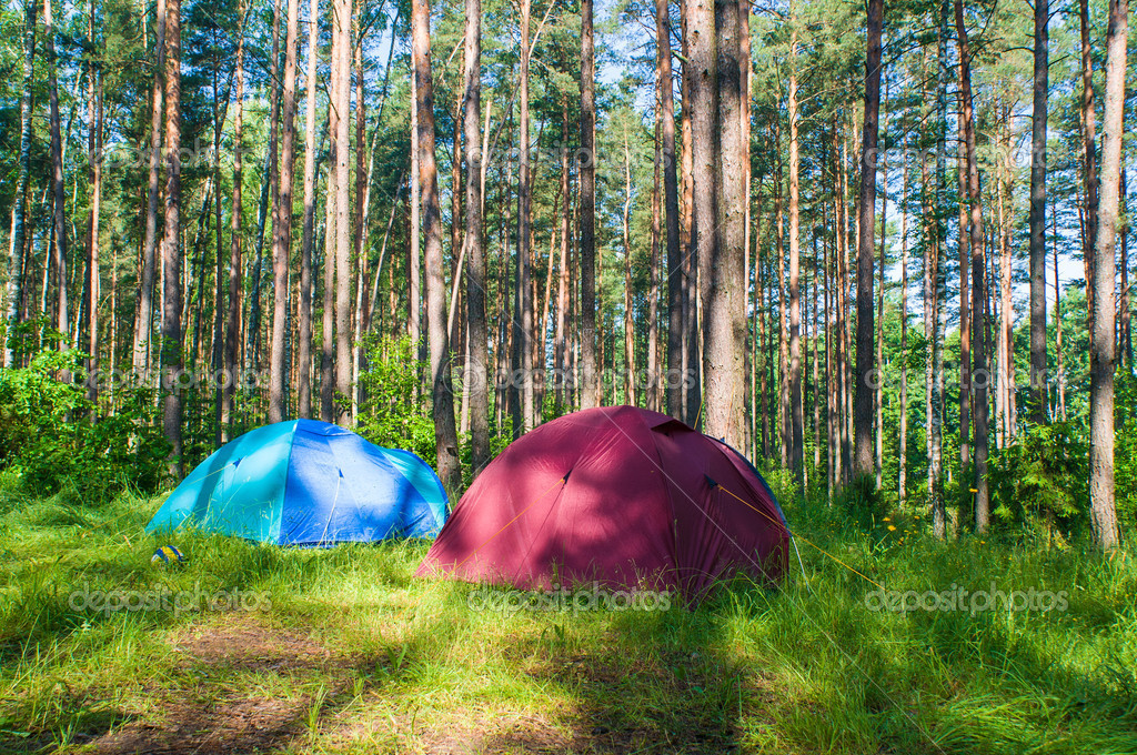 Tourist camp in the forest — Stock Photo #11090210