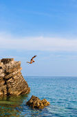 Boy Jumping Off Cliff Into Blue Water — Stock Photo