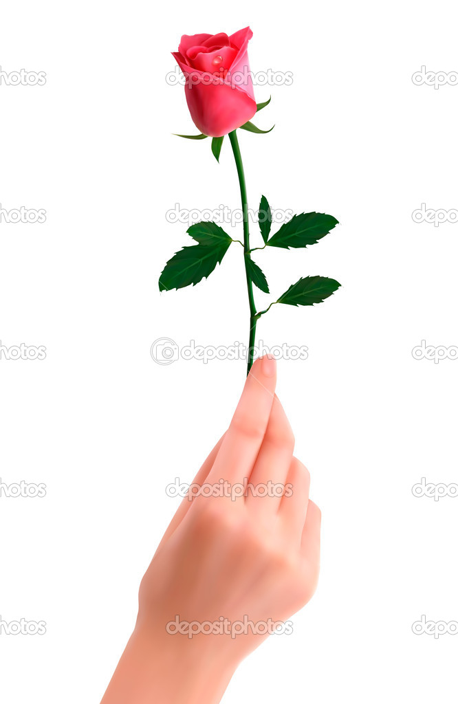 Hand holding red rose  Vector — Stock Vector #11092378