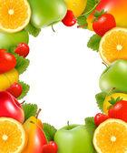 Frame feito da fruta fresca, suculenta. vector. — Vetorial Stock