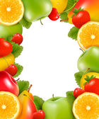 Frame made of fresh, juicy fruit. Vector. — Vettoriale Stock