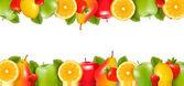 Due confini fatti di deliziosi frutti maturi. vector. — Vettoriale Stock