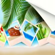 Background with photos from holidays on a seaside — Stock Vector