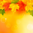 Autumn background with leaves — Stock Vector #12171362
