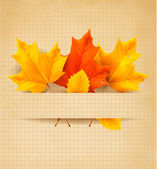 Autumn background with leaves — Vector de stock