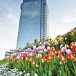 Skyscraper and tulips - Stock Photo