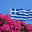 Greek of Nature — Stock Photo