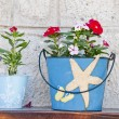 Beautiful flowers grown in handmade decorative containers - Stock Photo