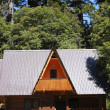 House in the meddle of the forest — Stock Photo