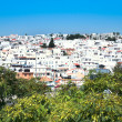 Stock Photo: Faro town in Portugal
