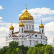 Royalty-Free Stock Photo: The Cathedral of Christ the Saviour, Moscow
