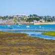 Ebb of tide water in Brittany — Stock Photo #11173037