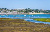 Ebb of tide water in Brittany — Stock Photo