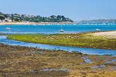 Riflusso di marea acqua in Bretagna — Foto Stock