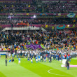 Final football game of UEFA EURO 2012 — Stock Photo #11796122