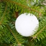 White plastic ball on Christmas tree — Stock Photo
