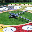 Flower clock — Stock Photo