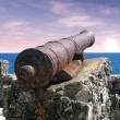 Cannon at dawn — Stockfoto