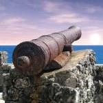 kanon bij dageraad — Stockfoto