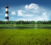 Lighthouse seen from the lagoon — Stock Photo