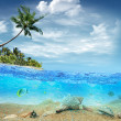 Underwater life near the beach of the tropical island — Stock Photo